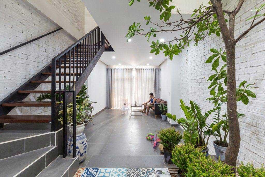 Mang cây xanh vô trong nhà không phải ai cũng làm được