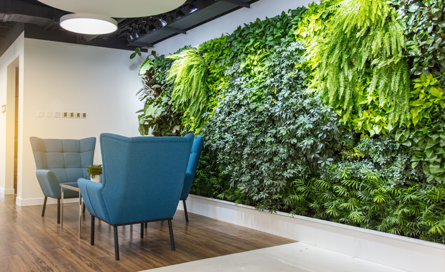 Mảng xanh trong nhà mang lại cảm giác thoải mái