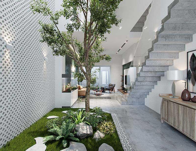 Trải nghiệm chuyện trồng cây trong nhà